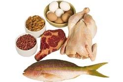 Eccesso di proteine