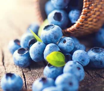 La dieta del viola-blu