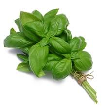 Basilico (foglie)