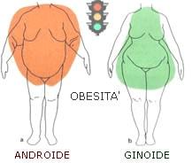 Obesità androide ginoide