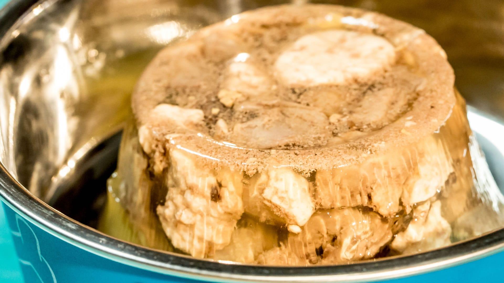 Cibo umido per gatti carne in gelatina fatta in casa for Ricette cibo