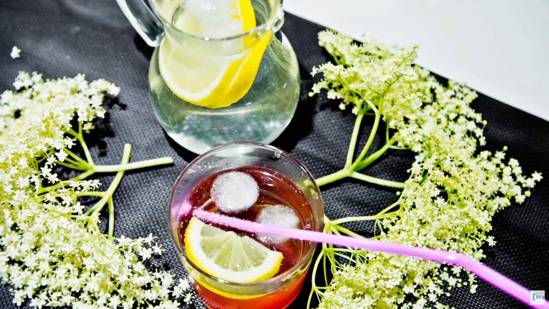Foto Sciroppo di sambuco - bibita rinfrescante e sciroppo naturale contro la febbre