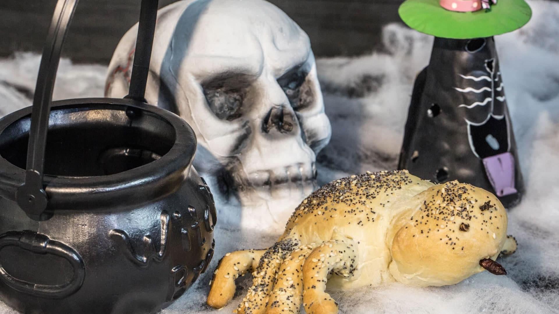 Foto Ragno Peloso di Halloween