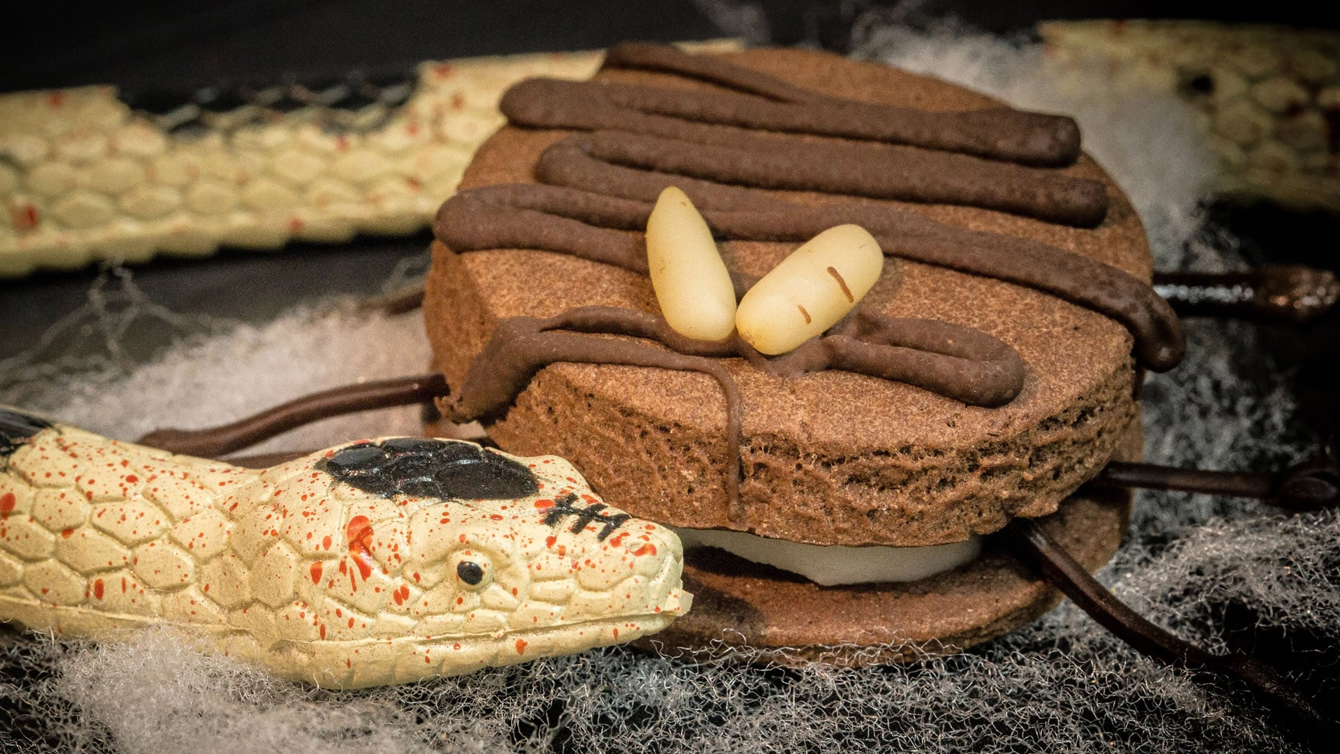 Foto Ragni di Halloween - Biscotti ripieni al cioccolato