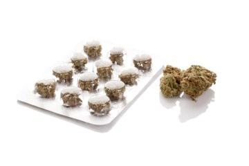 http://www.my-personaltrainer.it/imgs/2018/01/21/marijuana-per-la-cura-del-dolore-orig.jpeg