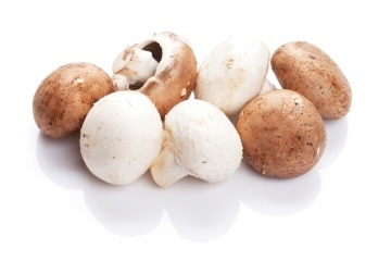 https://www.my-personaltrainer.it/imgs/2018/02/16/funghi-champignon-orig.jpeg