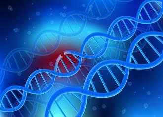 https://www.my-personaltrainer.it/imgs/2018/07/21/fibrodisplasia-ossificante-progressiva-genetica-orig.jpeg