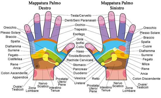 https://www.my-personaltrainer.it/imgs/2018/07/30/riflessologia-della-mano-mappatura-orig.jpeg