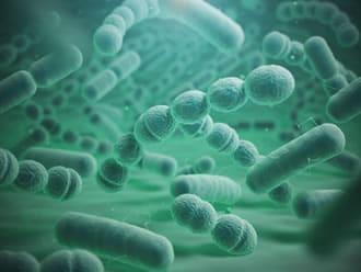 https://www.my-personaltrainer.it/imgs/2018/08/15/polmonite-batterica-cause-orig.jpeg