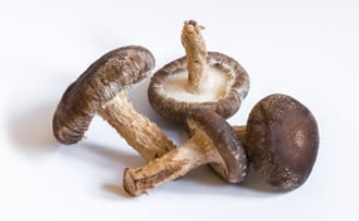 https://www.my-personaltrainer.it/imgs/2019/03/26/micoterapia-funghi-curativi-4-orig.jpeg