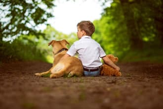 https://www.my-personaltrainer.it/imgs/2019/05/15/paura-dei-cani-terapia-orig.jpeg