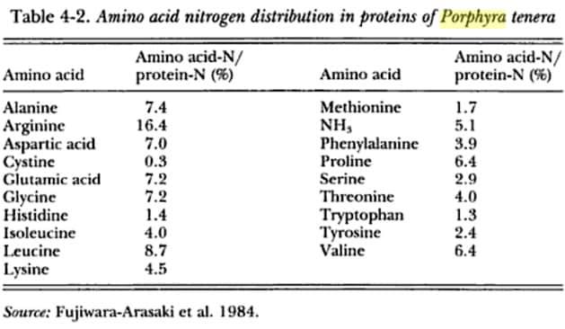 alga-nori-amminoacidi
