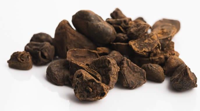 noci-di-cola