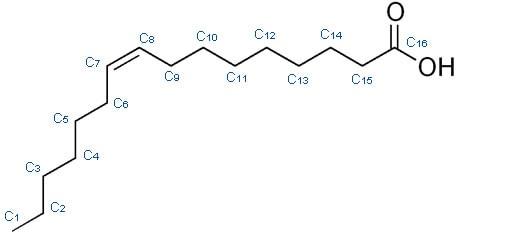 Acido palmitoleico