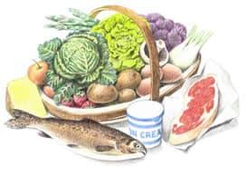 Cibi calorie alimenti