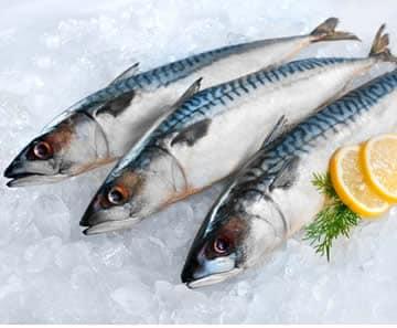 Pesce Omega 3 Eicosanoidi Buoni