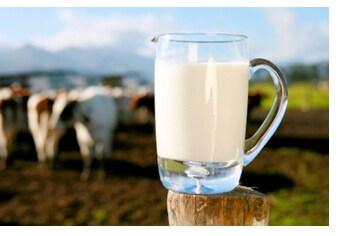 Il latte fa male?
