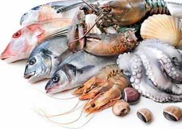 Pesce e prodotti della pesca
