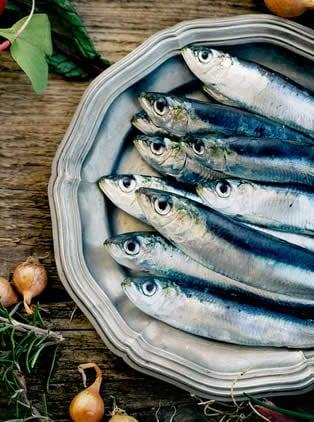 Azzurri pesci