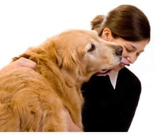 Allergia Agli Animali Domestici Cause
