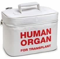 Borsa trapianto organi