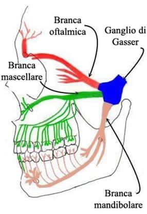 Fisioterapia per la nevralgia del trigemino