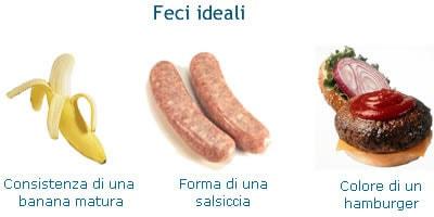 Feci: Forma e Consistenza delle Feci - My-personaltrainer.it